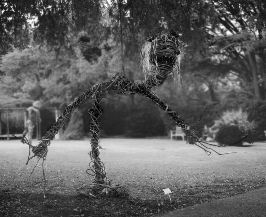 Scarecrow-Kudzilla-03-copy